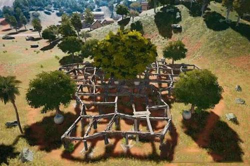 和平精英榕樹林1