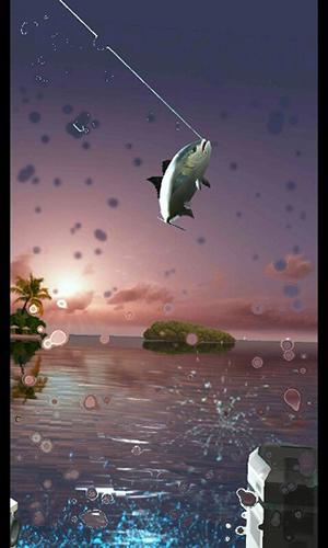 钓鱼胡克游戏特色