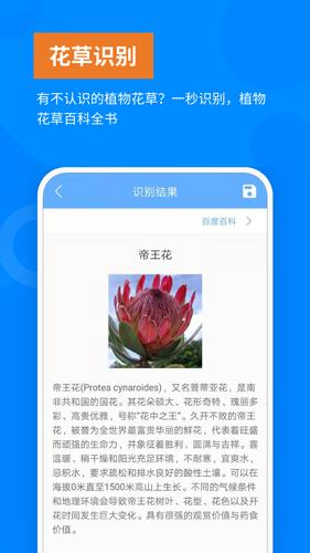 洋果掃描王app截圖4