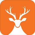 前途问鹿app