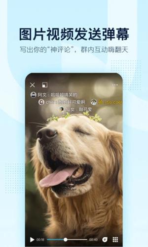 QQ手機版截圖5