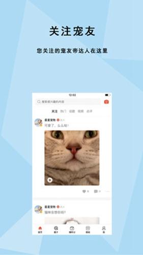 寵友帝app截圖3