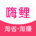 嗨鯉淘淘app