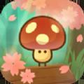 大膽小蘑菇