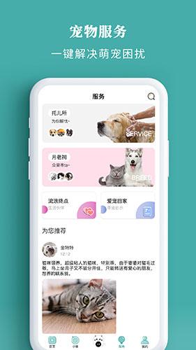 寵朕app截圖2