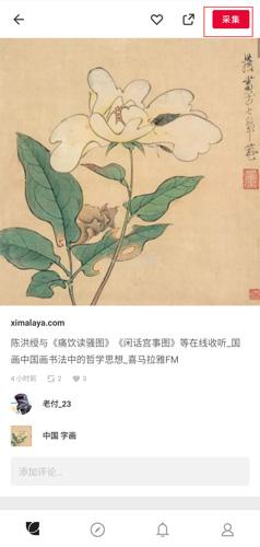 花瓣app图片2