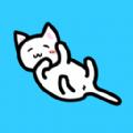 我和貓貓的生活