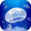養育水母的治愈游戲