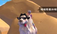 创造与魔法绅士骆驼怎么获得 坐骑刷新位置获得方法