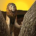 野生獅子生存模擬器