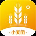 小麥團app