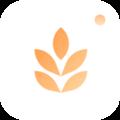 大麦相机app