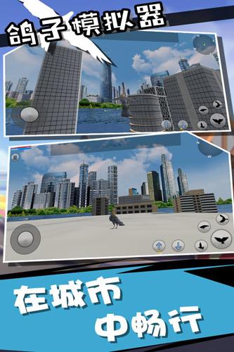 鸽子模拟器截图5