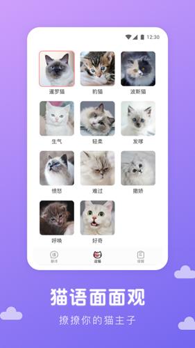 猫语翻译君APP截图2