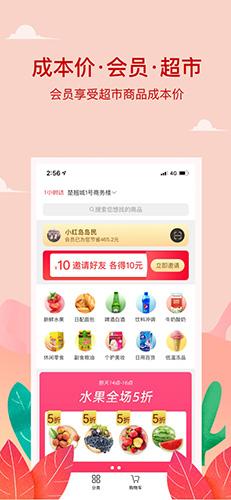小红岛app截图1