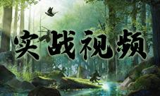 陰陽師SP山風視頻 初翎山風實戰動畫展示