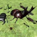 異國昆蟲大軍