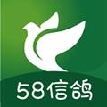 58信鸽app