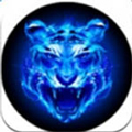 四虎app