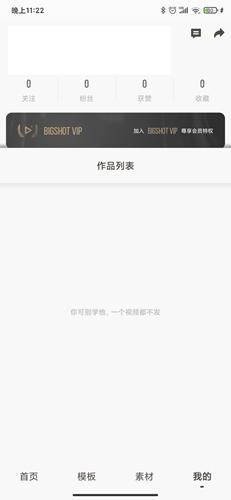 大片Bigshotapp4