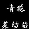 青花菜幼苗
