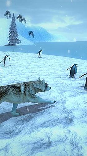 北极狼模拟器截图2