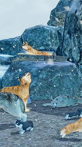 北极狼模拟器截图1
