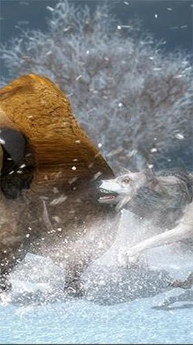 北极狼模拟器截图3