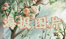 王者荣耀瑶自然之灵图片 巴宝莉联动皮肤高清海报