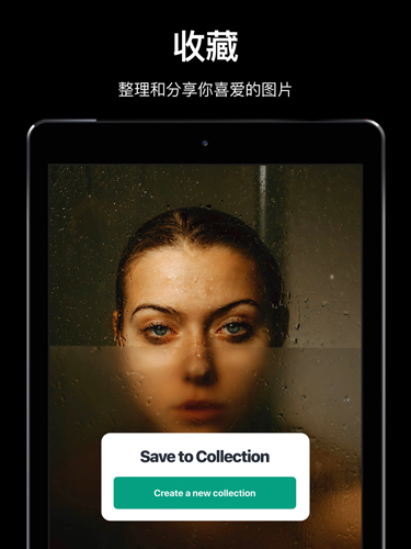 Pexels中文版app截圖5