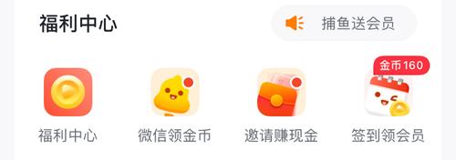 爱奇艺随刻版app怎么领会员
