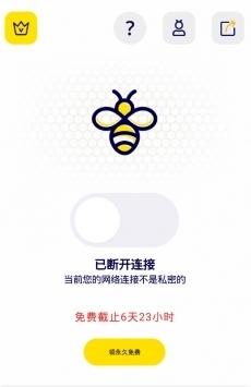 蜜蜂加速器永久免費版圖片
