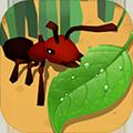 蚂蚁进化3d无限资源无限钻石版