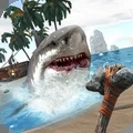 鯊魚大冒險