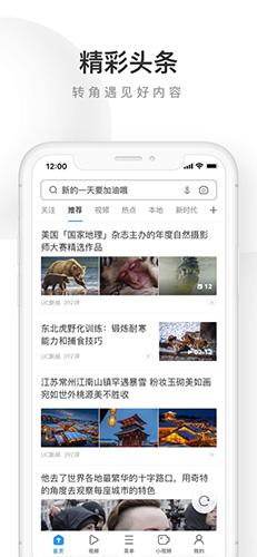 UC浏览器极速版app截图1